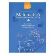 MATEMATICĂ M1. Manual pentru clasa a XI-a