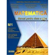 Matematică – Manual pentru clasa a XI-a – M1